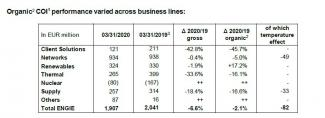Tab 2 COI Business lines
